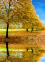 sefton park by popp2