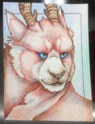 ATC: Horned Red Panda Lion by iMeltedCrayon