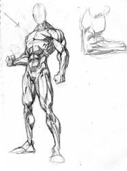 anatomy by Fpeniche