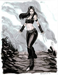 X23 by Fpeniche