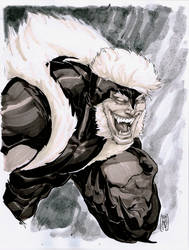 Sabertooth commission by Fpeniche