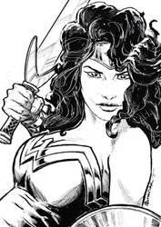 Wonderwoman by StudioCombine