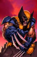 Wolverine by lummage