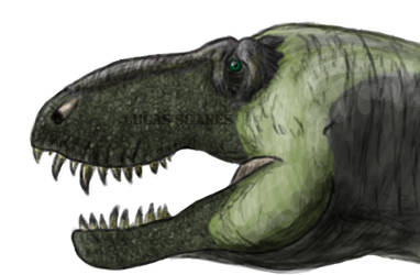 Tyrannosaurus with an extra chromosome by LGJW