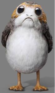 Porgarmy's Profile Picture