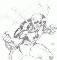 Hawk by timothygreenII