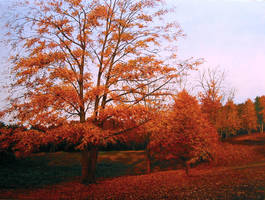 'Autumn' by sezartstudio