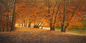 Autumn along the river by sezartstudio