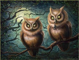 From the life of owls by n-a-S-t-u