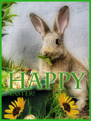 Happy Easter Finland by fi