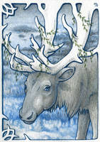 ACEO for Saqe by Dragarta