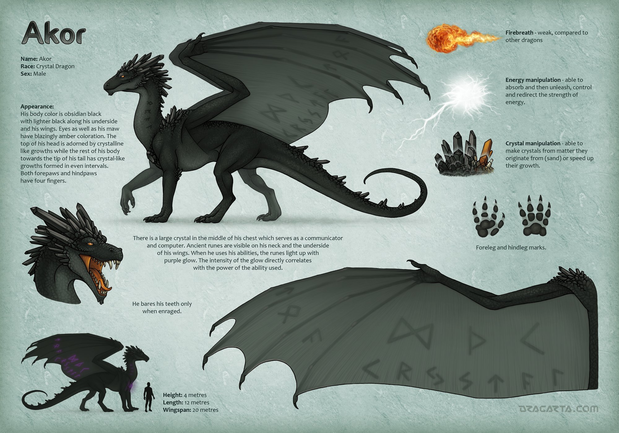 Character sheet for Akor by Dragarta