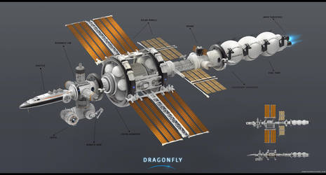 Dragonfly Ship Concept by JonathanDufresne