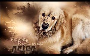 Mi perro Peter by UraDesing