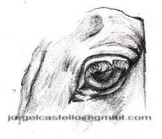 Ojo de caballo by UraDesing
