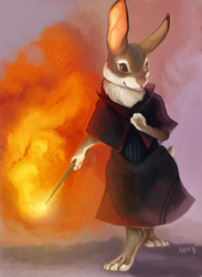 Rabbit Witch by ANicB