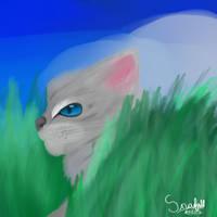 Jayfeather by Fluffy-Snow