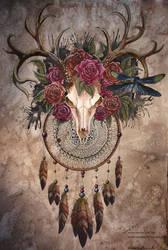 Dreamcatcher by Sunima