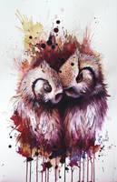 Owls by Sunima