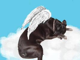 Pilot, Angelic by Destiny-Carter