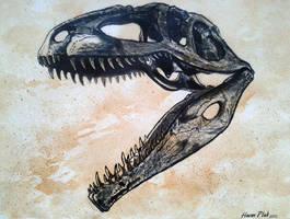 Dinosaur skull Giganotosaurus by watjong