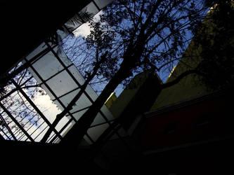 Cielo - Paseo La Plaza by Acv2Facundo