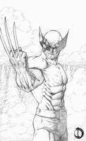 Wolvie 2 by santiagocomics