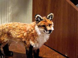 Red Fox by afiriti