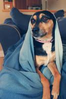 Mother Teresa by doyles-slave