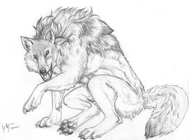 Ambrose Werewolf by arania