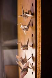 Cranes by NynjaKat