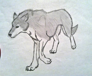 Wolf #3 anime :P by Casey3030