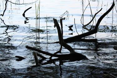 Wood On Riverside by hyperweasel