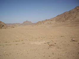desert stock 7 by HumbleBeez