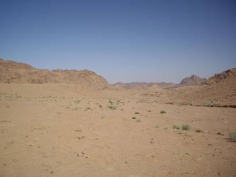 desert background stock 15 by HumbleBeez