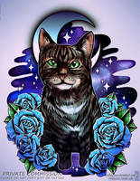 Cat Galaxy by RetkiKosmos