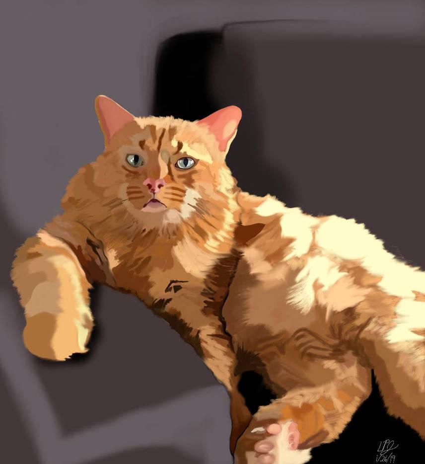 Stewie the Art Loving Cat by AnansiOneiros