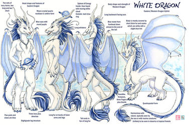 White Dragon Reference by KaceyM