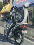 Tani's Bike by KaceyM