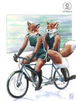 Tandem Bike by KaceyM