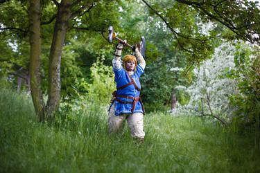 Hero of the Wild (8): The last Champion of Hyrule by Grenier-Illiane