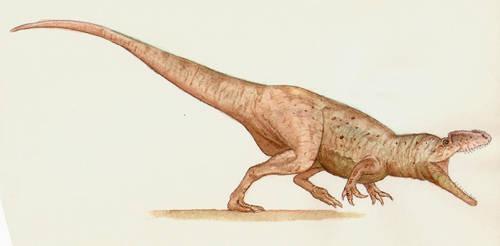 cf. Megaraptor by maniraptora