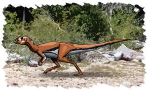 Ornithopoda by maniraptora