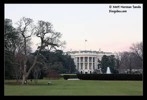 The White House by ratdog420