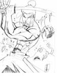 Samurai Jack Action by Darkstampede