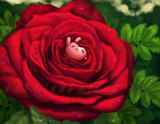 Rosebunny by celesse