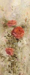 Roses in the Garden by OlegTrofimoff