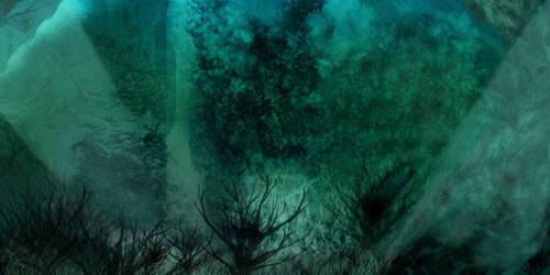 Lost Forest by zerodrk