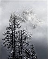 Winter by kootenayphotos