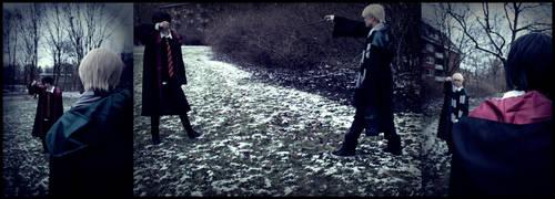 Harry/Draco by Sasuke-Kirin